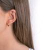 Earrings Texas gold