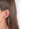 Earrings Cambridge gold